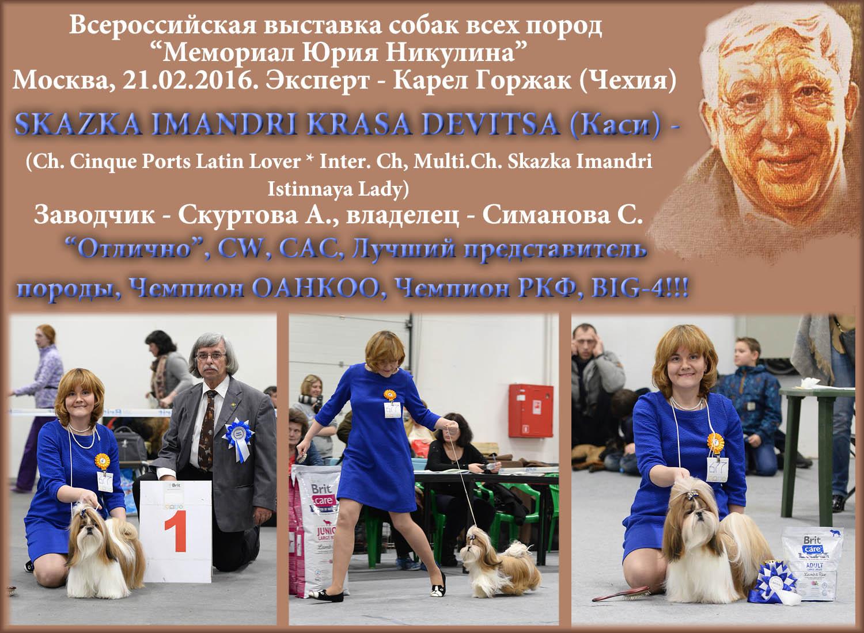 Выставка памяти Юрия Никулина, 21 февраля 2016 г. Skazka Imandri Krasa Devitsa