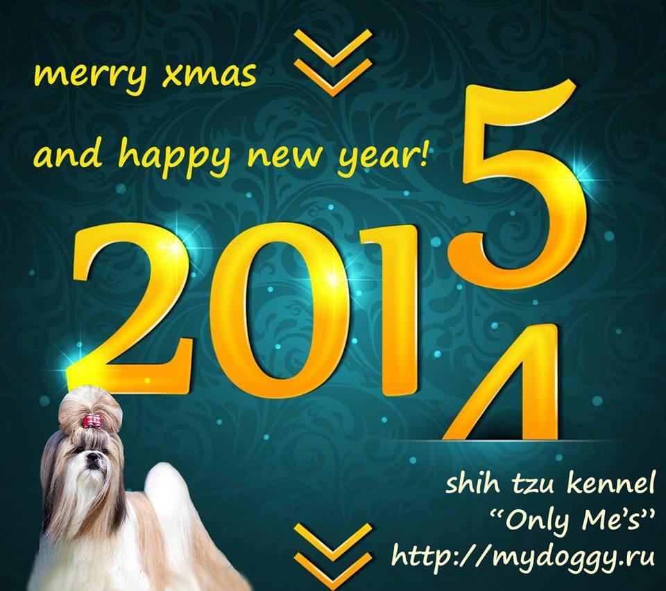 """С  новым 2015 годом и Рождеством от питомника Ши Тцу """"Only Me's"""""""