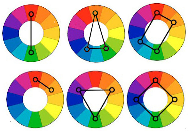 Цветовой круг. Выставочные банты для Ши тцу. Как правильно подбирать