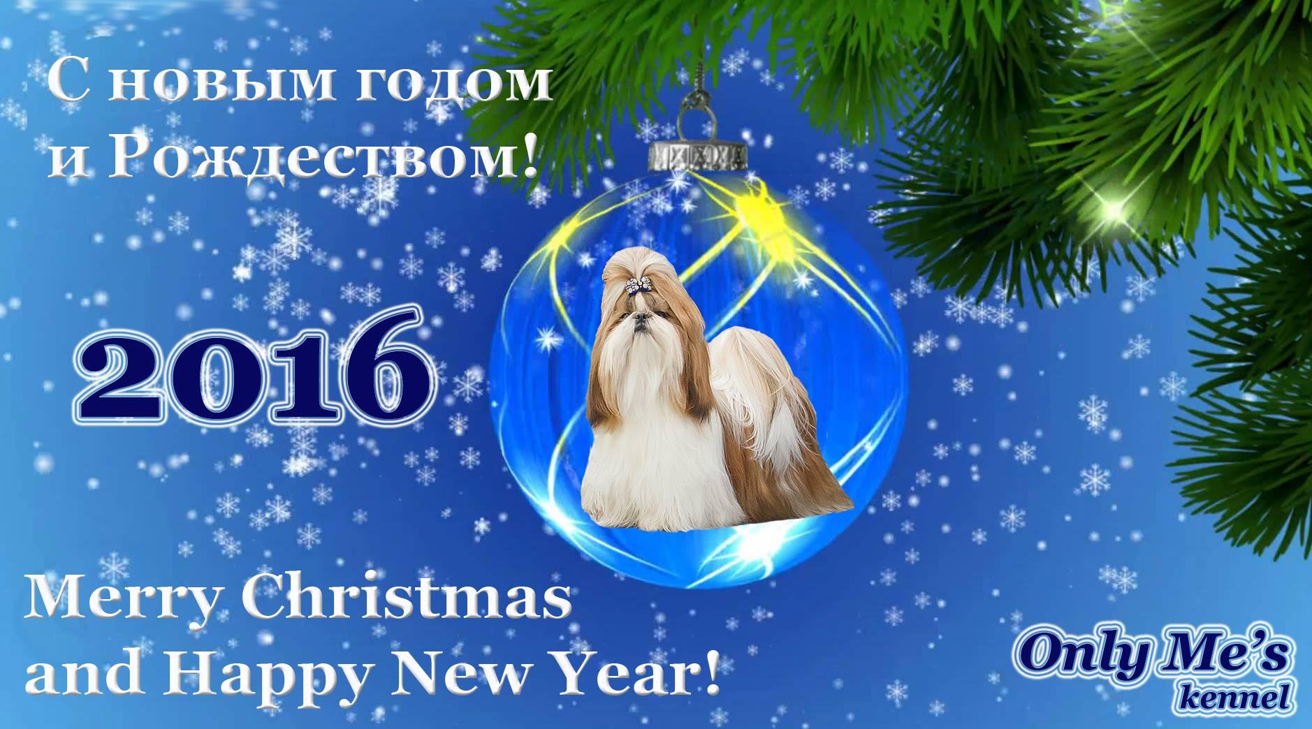 С новым 2016 годом и Рождеством! Сайт MyDoggy.ru