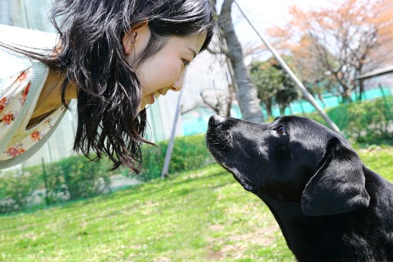 Окситоцин и его роль в отношениях между собакой и человеком