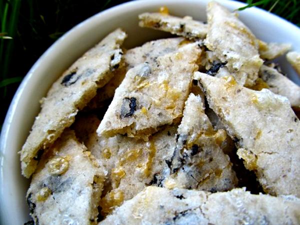 Хозяйкам на заметку: сырное печенье для собак с водорослями
