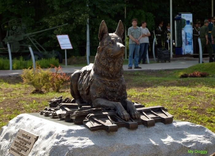 Памятники собакам. Памятник фронтовой собаке