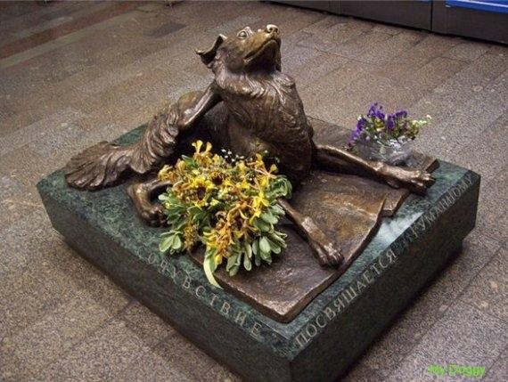 Памятники собакам. Сочувствие