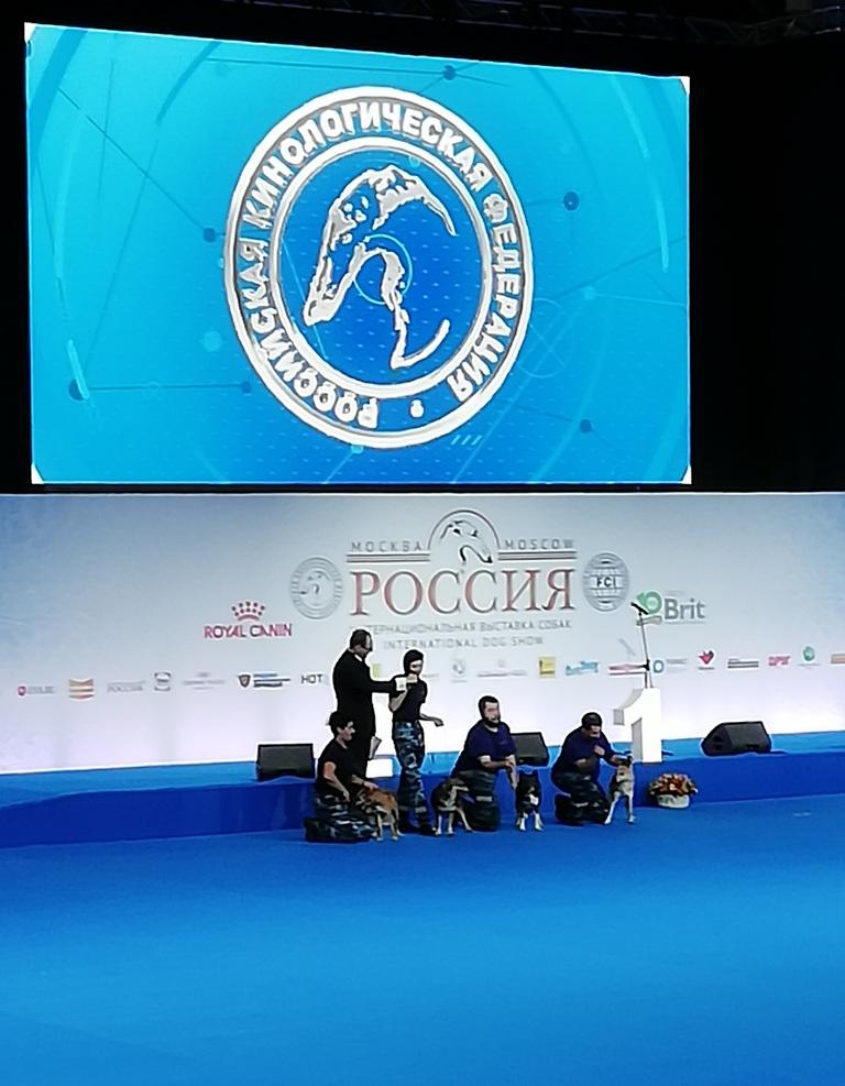 """Шалайки. Выставка """"Россия"""", 03.11.18"""
