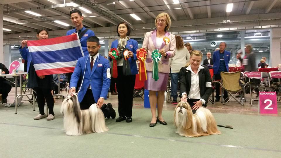 Euro Dog Show 2015. Результаты рингов Ши тцу