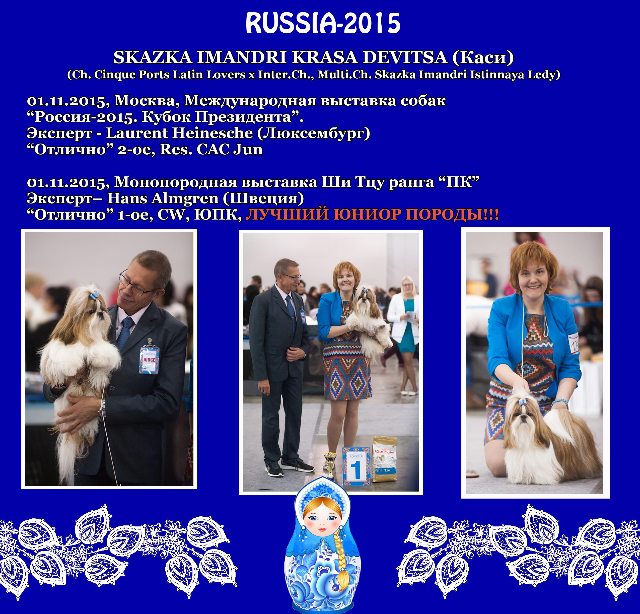 """Результаты Каси (Skazka Imandri Krasa Devitsa) на международной выставке """"Россия-2015"""", проходившей 01 ноября 2015 г. в Москве"""