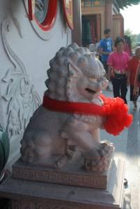 Самец собачки Фу во время празднования Китайского нового года. Бангкок. Таиланд