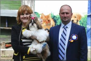 24 мая 2015 г., выставка собак, г. Химки