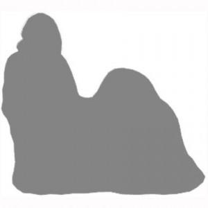 Расширенный стандарт породы Ши-тцу