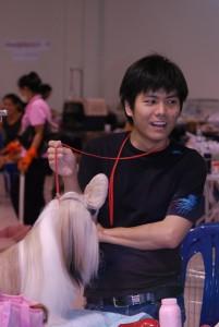 Выставочный тайский груминг