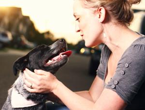 Собаки умеют читать наши мысли
