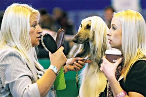 Что расскажет собака о хозяине?