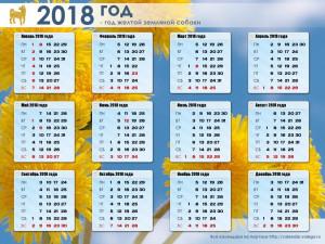 Календарь международных и национальных выставок собак в 2018 году