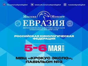 """Выставка """"Евразия"""" в 2018 году. Первый день, результаты рингов"""