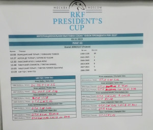 Кубок Президента РКФ - 2019. Результаты ринга Ши Тцу