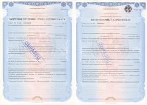 Ветеринарный-сертификат-Таможенного-союза